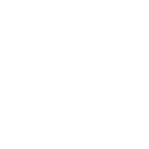 sporta sistēmas veikala ikona